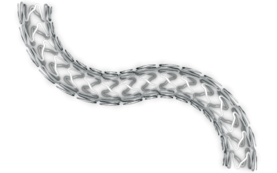 Kaname® CoCr Coronary Stent System